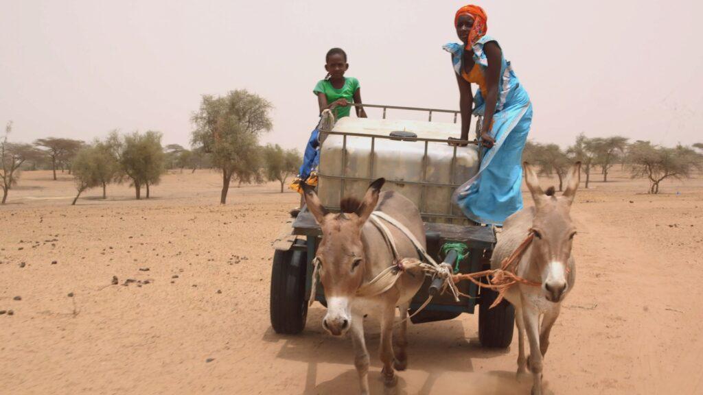 """SÜDWESTRUNDFUNK SCHAU IN MEINE WELT!, """"Fatou kämpft! Gegen Wassermangel """", am Sonntag (27.06.21) um 20:30 Uhr. Fatou und ihre jüngere Schwester Khady holen täglich Wasser für die 19 Menschen in ihrem Dorf. © SWR/Irja von Bernstorff, honorarfrei - Verwendung gemäß der AGB im engen inhaltlichen, redaktionellen Zusammenhang mit genannter SWR-Sendung bei Nennung """"Bild: SWR/Irja von Bernstorff"""" (S2). SWR Presse/Bildkommunikation, Baden-Baden, Tel: 07221/929-22202, foto@swr.de"""